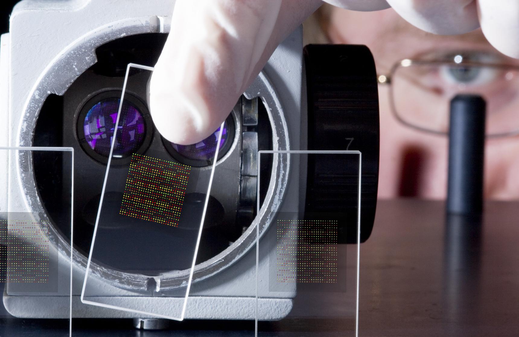 Small Tech & Semiconductors